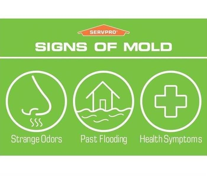 Signs of Mold by SERVPRO of Loudoun County